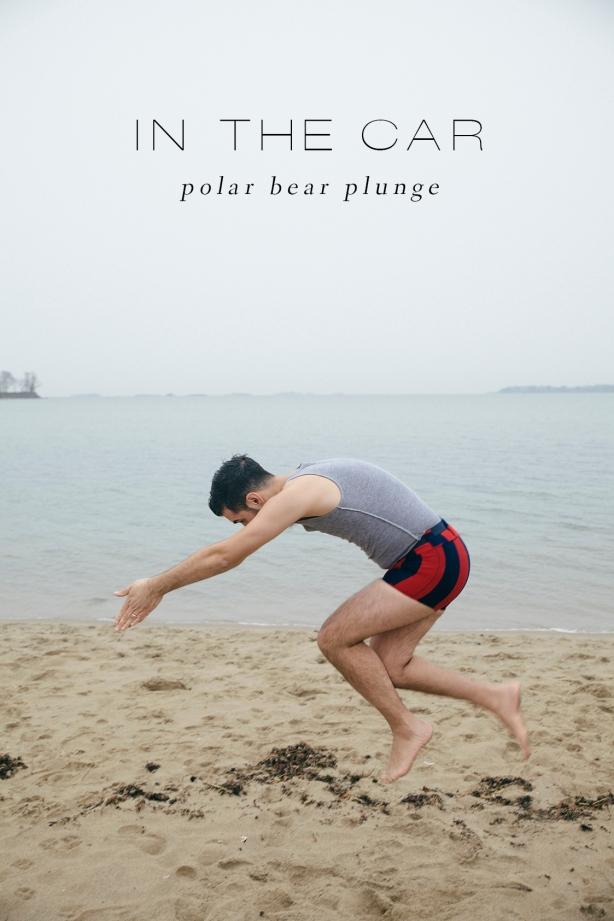 polarbear_2_type